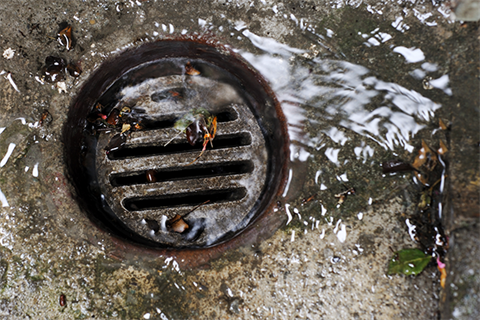 Wastewater - Water running down a garden drain.