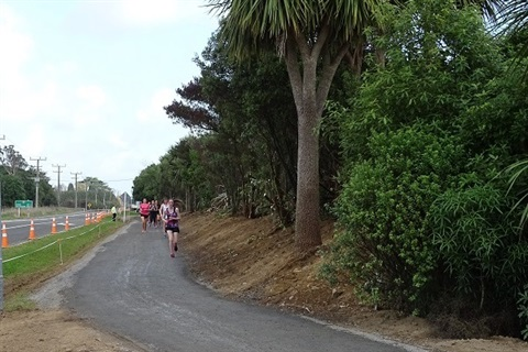 Arapaepae Road Shared Pathway.